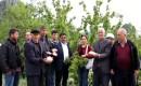 Erdemli'de Dolu Yağışı Etkili Oldu