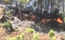 Mersin'de Orman Yangını, 1 Mahalle Boşaltıldı-3