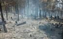 Mersin'deki Orman Yangınında Mezarlık Büyük Zarar Gördü
