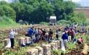 Prof. Dr. Gülçubuk: Türkiyede 1 Milyonun Üzerinde Gezici Tarım İşçisi Var