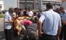 Suriyeli Çocuk Kazada Hayatını Kaybetti