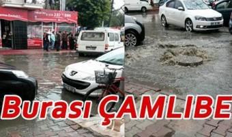camlibel-sel