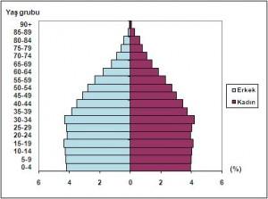 nufus-piramidi