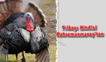 yilmabi_hindisi
