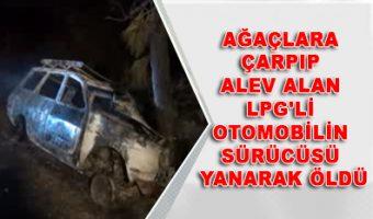 Ağaçlara çarpıp alev alan LPG'li otomobilin sürücüsü yanarak öldü