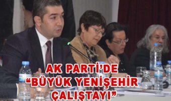 """AK Parti'de """"Büyük Yenişehir Çalıştayı"""""""