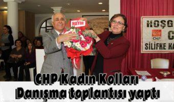 CHP Kadın Kolları Danışma toplantısı yaptı