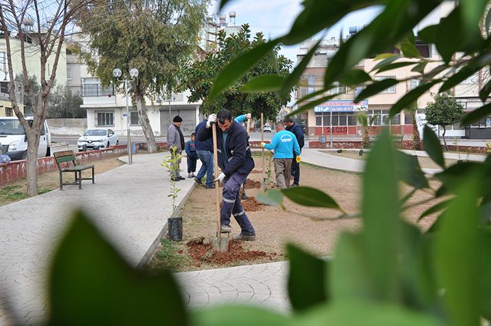 bakım ve yeşillendirme çalışmaları devam ediyor (1)