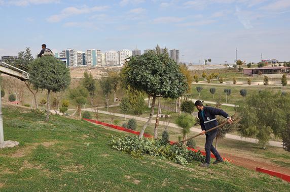 bakım ve yeşillendirme çalışmaları devam ediyor (2)